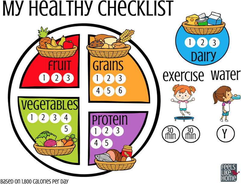 My Healthy Checklist from Feels Like Home